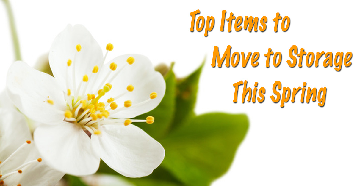 Top Items to Move into Storage Containers This Spring