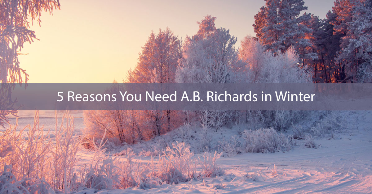 5 Reasons You Need A.B. Richards in Winter